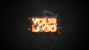I will make 10 amazing intro video for your logo