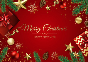 I will edit your images for Christmas, Custom Christmas Cards
