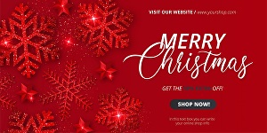 I will design a christmas web banner, cover, header,ads