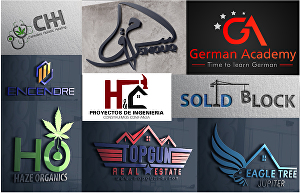 I will create a professional business logo