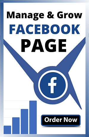 I will Be Your Facebook Page Manager And Create Posts