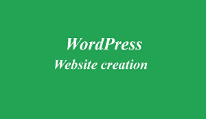 I will customize any kind of WordPress theme