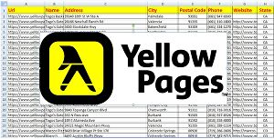 I will scrape yellow pages to get email list, address and contacts