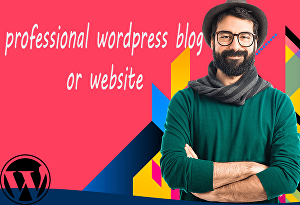 I will create a professional wordpress blog or website