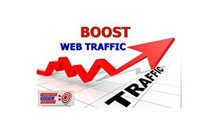 I will drive targeted web traffic to your website for 30 days