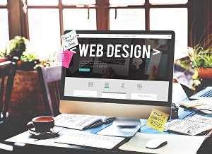 I will develop a professional business website