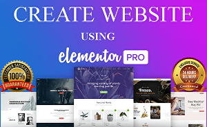 I will  design Unique WordPress website using elementor pro page builder