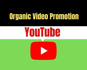 I will do organic video promotion through social ads