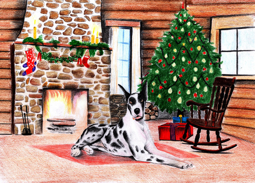 draw illustration for your book in color or black and white,digital or with colored pencils