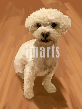 turn your pet portrait into digital painting or hand drawn