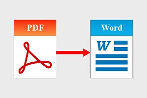I will convert your PDF document to MS word and format