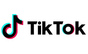 I will deliver 1000 TIKTOK followers
