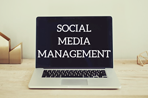 I will manage your socials for one month