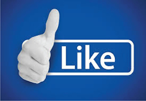 I will add 1200+ REAL human Facebook likes on your Facebook page