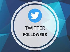 I will deliver 600+ Twitter Followers Life Time Guaranteed