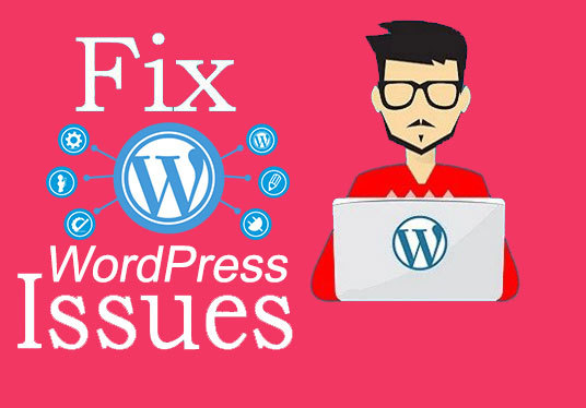 fix any WordPress website bugs and issues