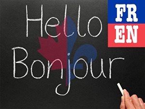 I will perfectly translate up to 1000 words French to English or English to French