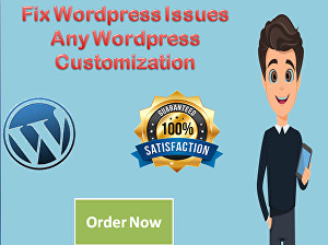 I will install wordpress theme and plugin or customize wordpress