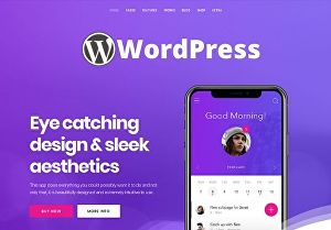 I will install WordPress theme and setup same like demo