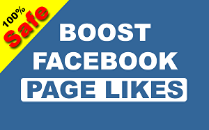I will add 150 Permanent Facebook Page Likes