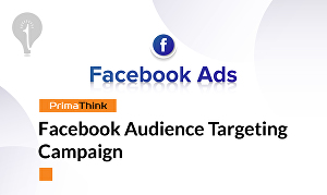 I will Create Facebook Audience Targeting Campaign
