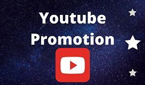 I will do organic youtube promotion for your videos or channels