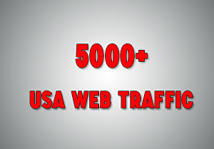 I will provide 5000 USA web traffic
