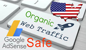 I will Provide Adsense Safe real organic Traffic