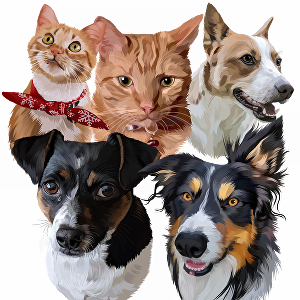 I will draw your pet portrait into cartoon art with vector style illustration