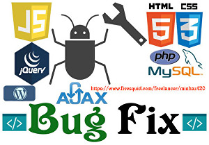 I will bugfix your website PHP, MySQL or WordPress problem