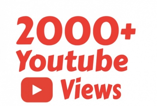 Give you Fast Real-Instant 2,000+ Youtube Video Views