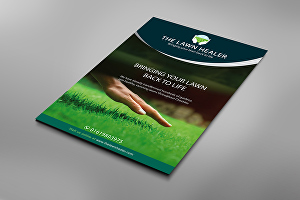 I will Design Creative Flyer