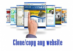 I will clone any webiste by WordPress