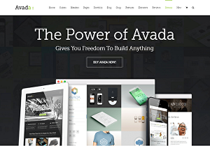I will install and customize website with Avada theme