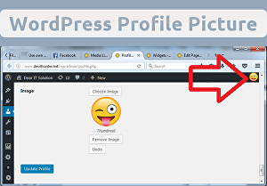I will Help you use own photo in WordPress profile