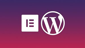 I will design a fully responsive WordPress website with Elementor Pro and Astra pro or OceanWP, o