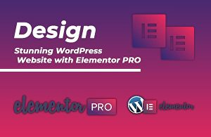 I will Build WordPress Website Design Using Elementor Pro within 24 hrs