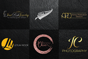 I will do modern logo design with 24 hour delivery