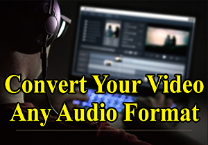 I will professionally convert your 10 video files in any audio format.