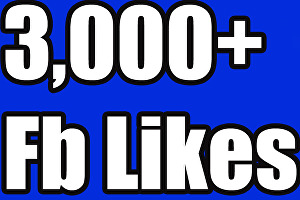 I will add 3000+ likes for your Fan Page