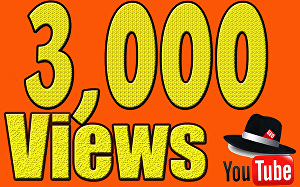 I will Give You High Quality 3,000+YouTube views