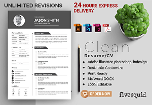 I will write a Professional CV Within 24 hours
