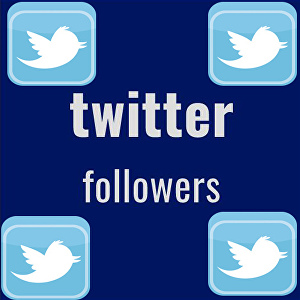 I will Give you 15,00+ Twitter Followers non-drop and stable