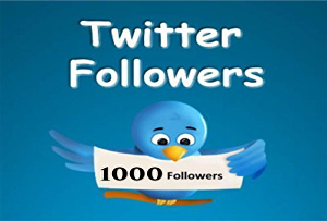 I will Give you 1, 600+ Twitter Followers Will be Added to Your Account