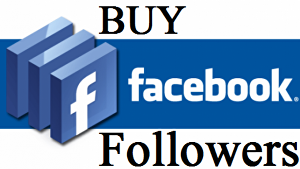 I will Give you 3,000 non drop facebook page followers