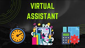 I will provide virtual assistant services