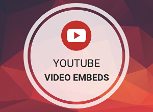 I will Embed Your Video by Organic Promotion