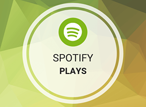 I will Give You Guaranteed 2000 Spotify Plays
