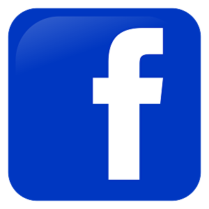 I will Give You 500+ FaceBook Fan-Page Likes 100% Real and Active