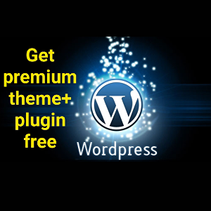 I will Create a Wordpress website and get premium theme and plugins free